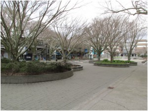 Main area on the Massey campus