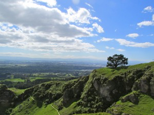 Top of Te Mata Peak