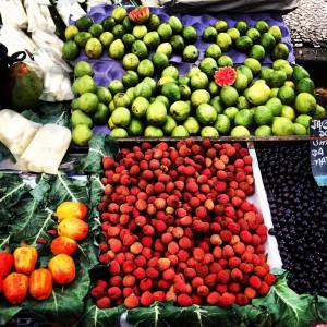 Gavea Farmers Market