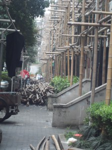 Jewish housing under construction with bamboo