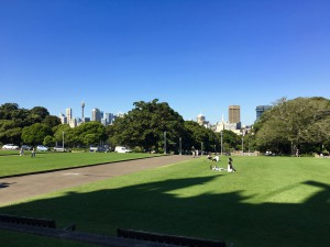 View of Sydney from Uni